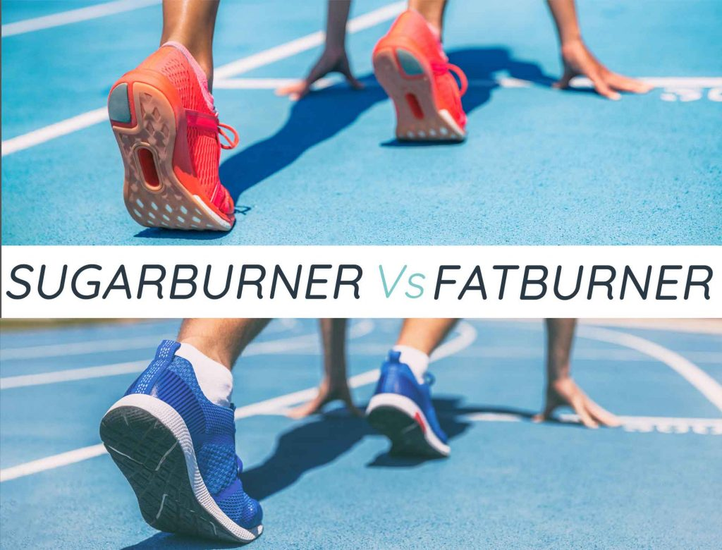 sugarburner vs fatburner