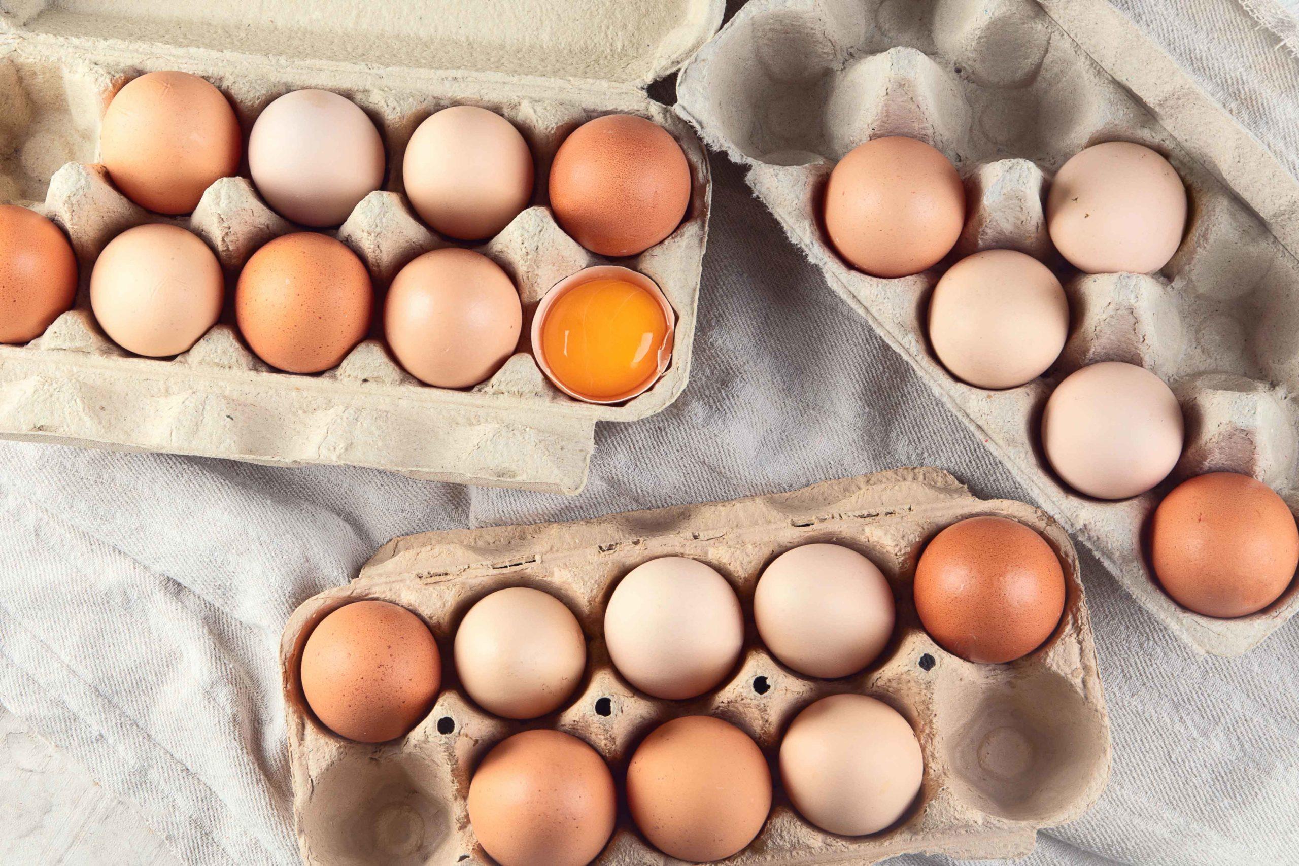 eieren zijn het perfecte keto food