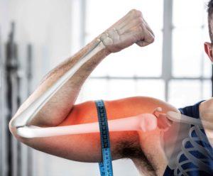metabolisme anabolisme spieren en prestatie